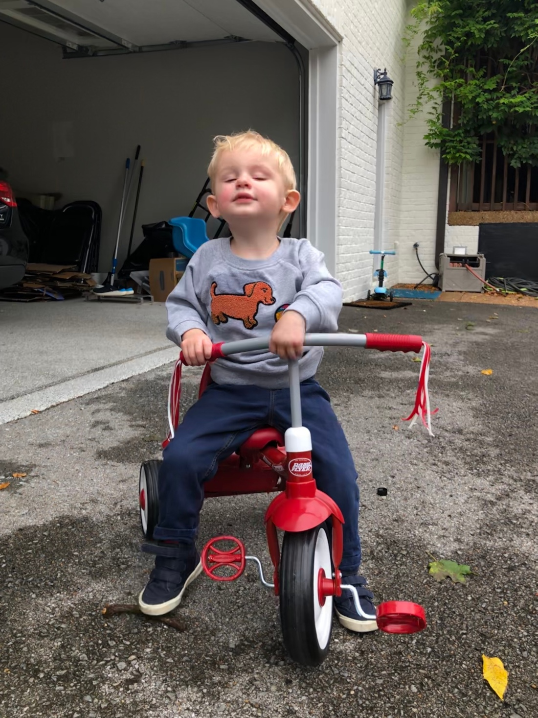 The same blonde haired little boy sits on a red tricycle wearing jeans and a gray sweatshirt with a dog on it. His head is lifting up to the sky.